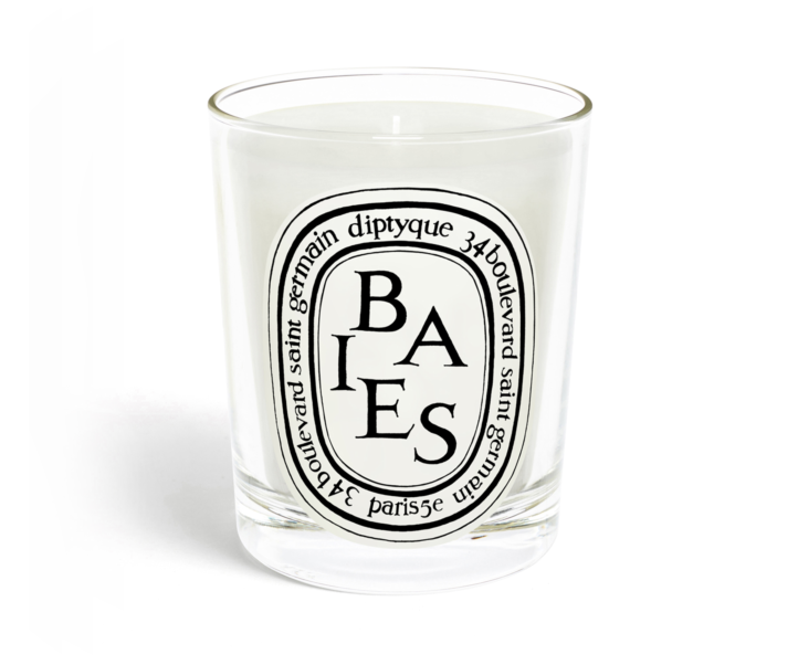 STYLECASTER | Diptyque Baies dupes